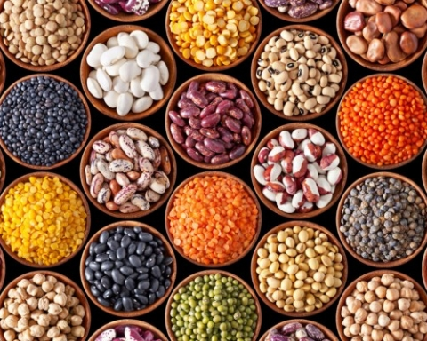 Getting Enough Protein on a Plant Based Diet