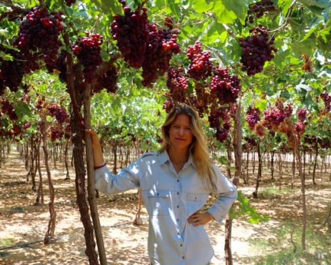 Meet The Woman Who is Shaking Up Egypt's Organic Farming