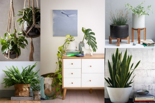 15 Design Ideas to Bring Spring to Your Home