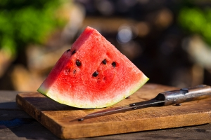 276_1watermelon_slice