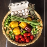 fruit and veg basket