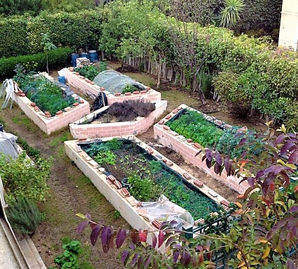 Raised beds spring 2017