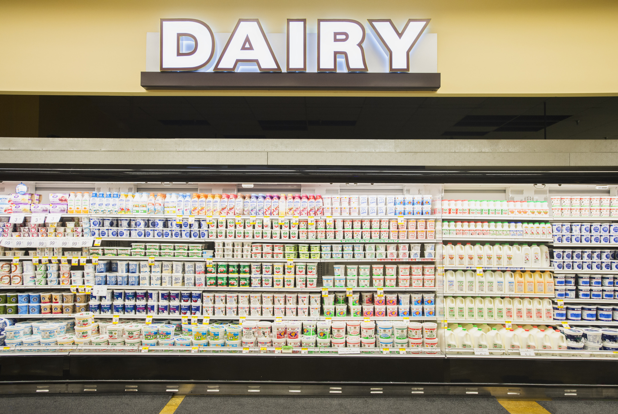 5 Disturbing Facts The Dairy Industry Doesn't Want You to Know