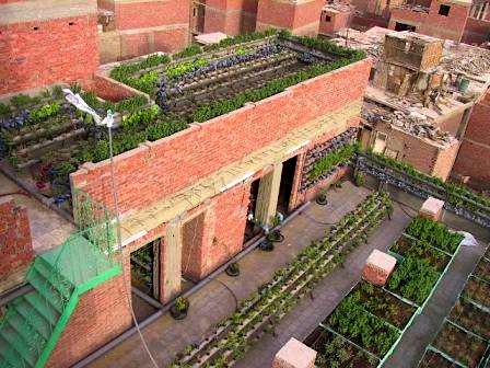 Green Buildings: The Solution to Cairo's Unmanageable Urban Sprawl